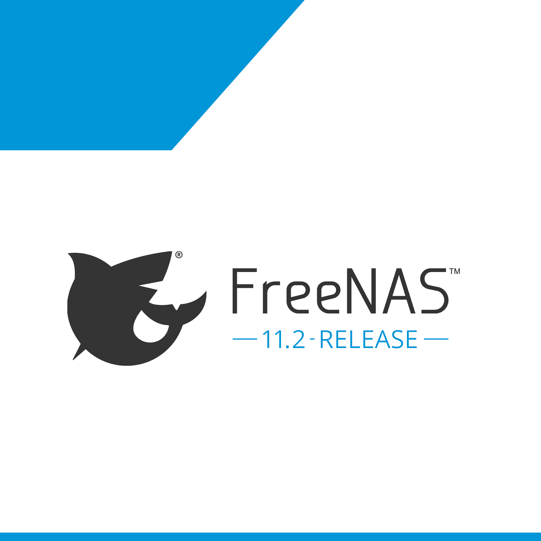 FreeNAS® 11.2 Brings New Web Interface, Virtualization, and Security Features To The World's #1 Software-Defined Storage
